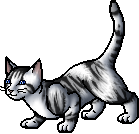 File:Ivypool.apprentice.png