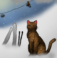 Thumbnail for version as of 02:02, January 1, 2012