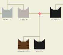 Beetlenose.family
