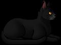 Nightfur.elder