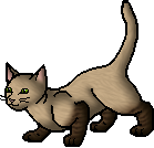 File:Marshpaw.apprentice.png