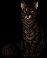 Tigerstar (AVoS).leader