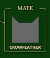 Crowfeather.Icon2