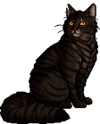 Tigerstar (AVoS).warrior