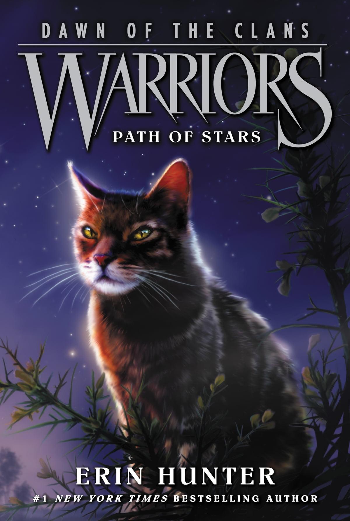 Warrior Cats Dawn Allegiances