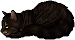 Tigerstar (TPB).kit