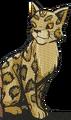 Leopardstar.GA