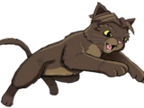 Little Mew