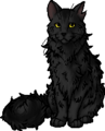Graystripe.leader