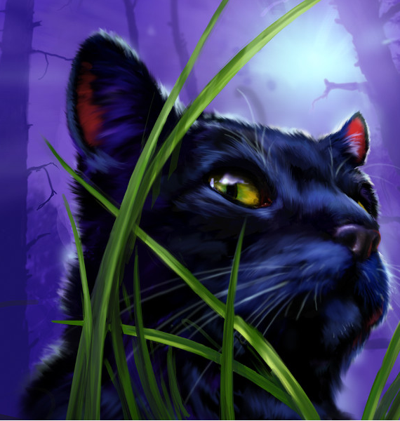 Warriors A Vision Of Shadows Raging Storm: Category:WindClan Cats