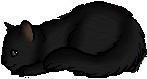 Hatchkit