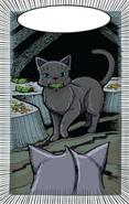 Medicine cat den.GA