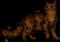 Cheetahfur56.personal.png