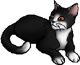 Swiftpaw (TPB).star