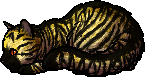 File:Bee.kit.png