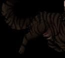 Tigerstar (AVoS)
