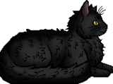 Graystripe/Main article