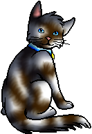 File:Whiskers.kittypet.png