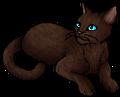 Mousefur.star