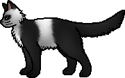 File:Padfoot's charart.png