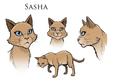 Sasha.concept2