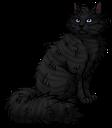 Kinkfur.warrior
