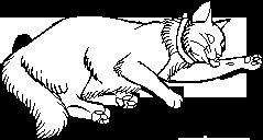 Kittypet.long