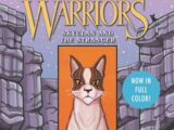 SkyClan and the Stranger (book)