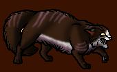 Tigerstar (TPB).df.alt