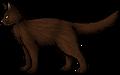 Fox.rogue