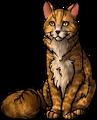 Leopardstar.leader