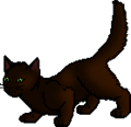 Shadepelt (AVoS).apprentice