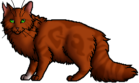Squirrelflight.ghost