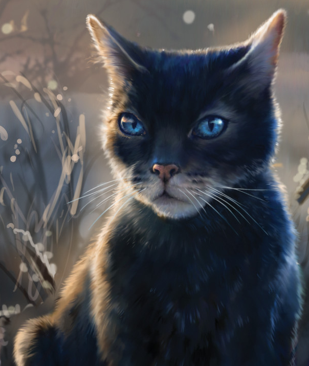 Crowfeather/Main Article