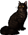 Tigerstar (TPB).warrior