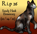 Thumbnail for version as of 02:40, December 15, 2012