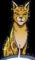 Leopardstar.ASIR