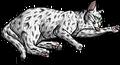 Frecklewish (SkC).kittypet.alt