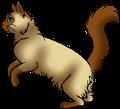 Yew Tail.hunter