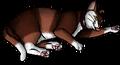 Mitzi (KP).kittypet