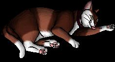 Mitzi (KP)