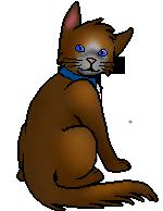 Pod.kittypet