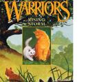 Rising Storm/Gallery