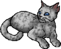 Ashfur (TC).star