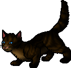 File:Beechpaw (SC).apprentice.png