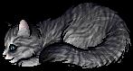 File:Stone (HJ).kit.png