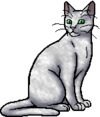 Ivypool.warrior.alt2.png