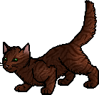 Copperpaw