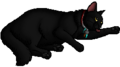 Shrewtooth.kittypet