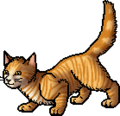 Lioneye.apprentice.png